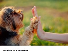 Animales esoterismo