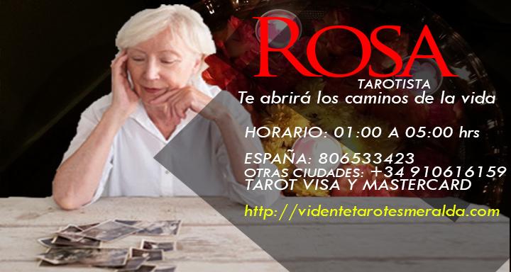Vidente Rosa