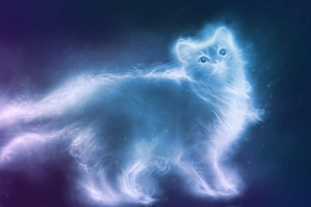 Animales espirituales mascotas